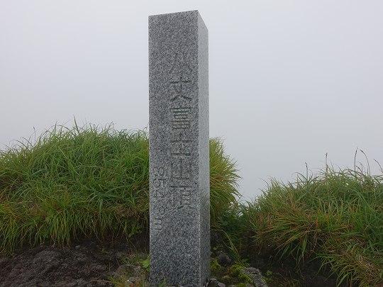 0446-16.jpg